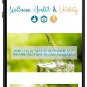 mobile visualisation of a webiste